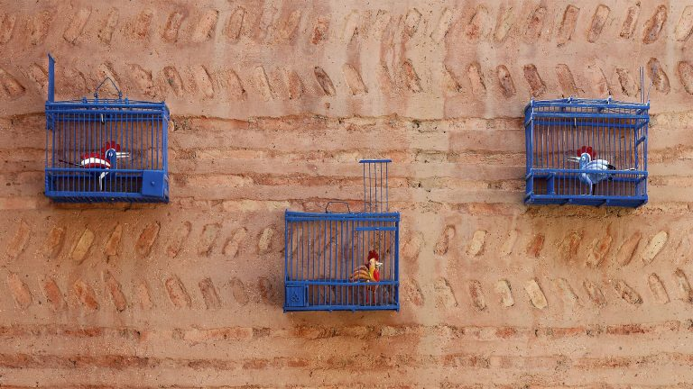 murs riad Dar Housnia à Marrakech
